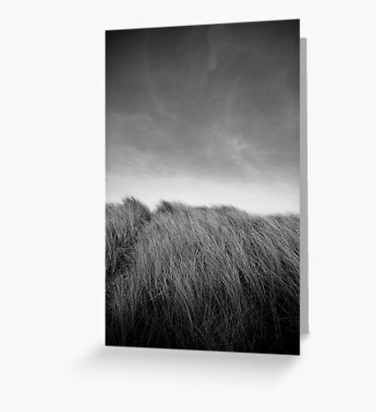 Grass in Bull Island Greeting Card