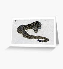 Rattler Greeting Card