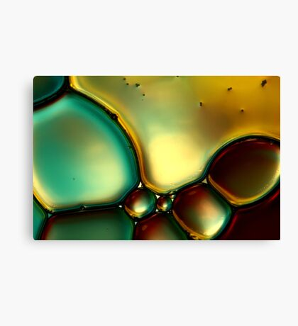Oil & Water Abstract I Canvas Print