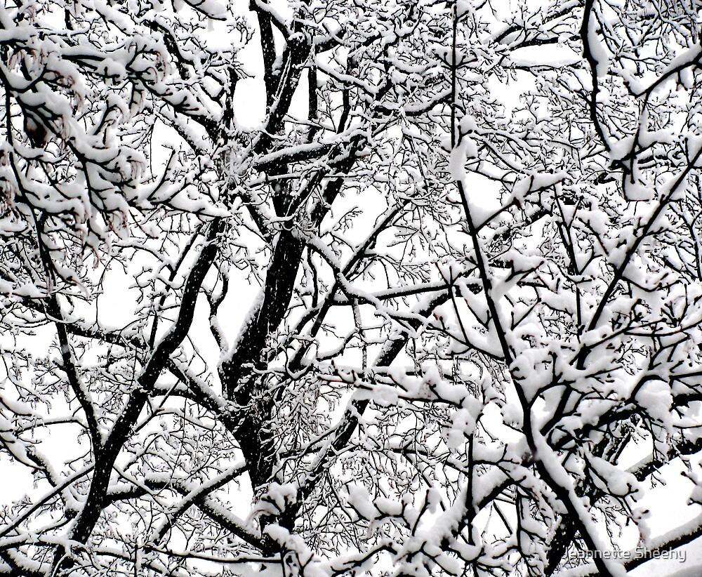 Winter Tangle by Jeannette Sheehy