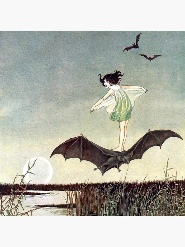 Fairy Girl Riding a Bat - Ida Rentoul Outhwaite by forgottenbeauty