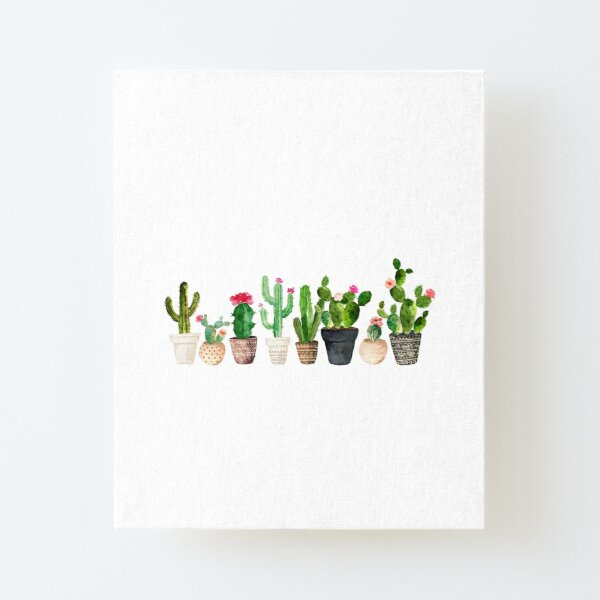 Cactus Canvas Mounted Print