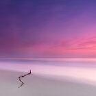 Woorim Dawning - Bribie Island Qld Australia by Beth  Wode