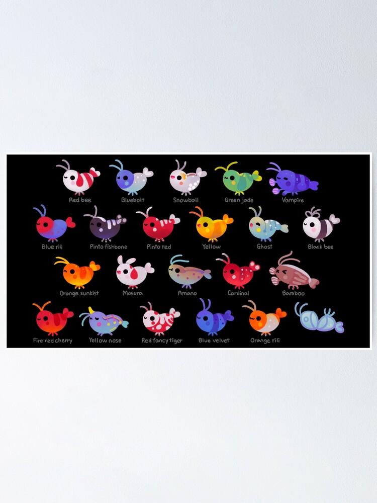 Alternate view of Freshwater shrimp - name Poster