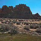 Kokapelli Golf in Utah by Judson Joyce