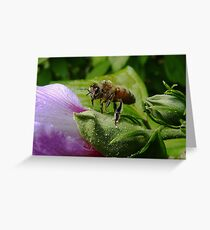 """Fee fie foe fum... Look out flower here I come!"" Greeting Card"