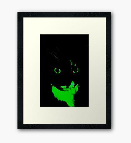 GATO NEGRO. Framed Print