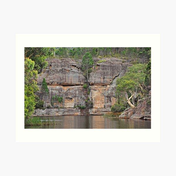 Grand Scale - Dunn's Swamp NSW Australia Art Print