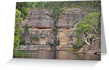 Grand Scale - Dunn's Swamp NSW Australia by Bev Woodman
