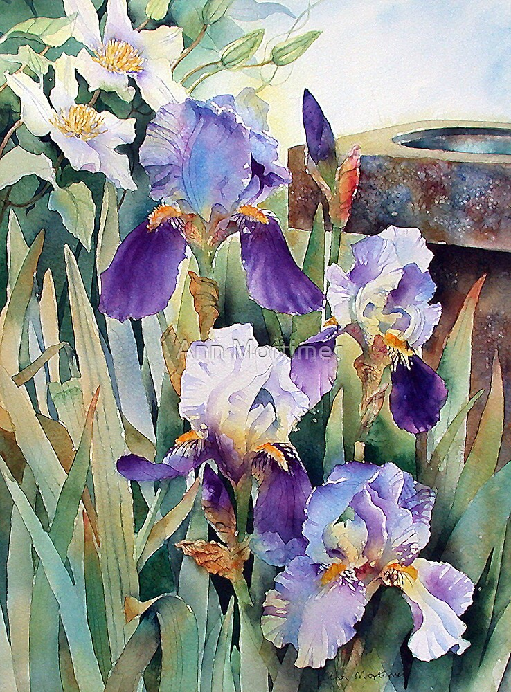 Irises and Clematis by Ann Mortimer