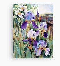 Irises and Clematis Canvas Print