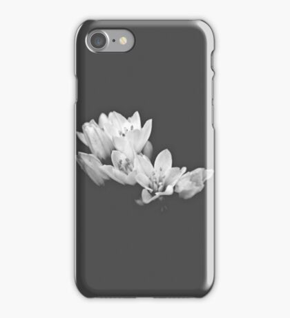 Blossom in the Dark iPhone Case/Skin