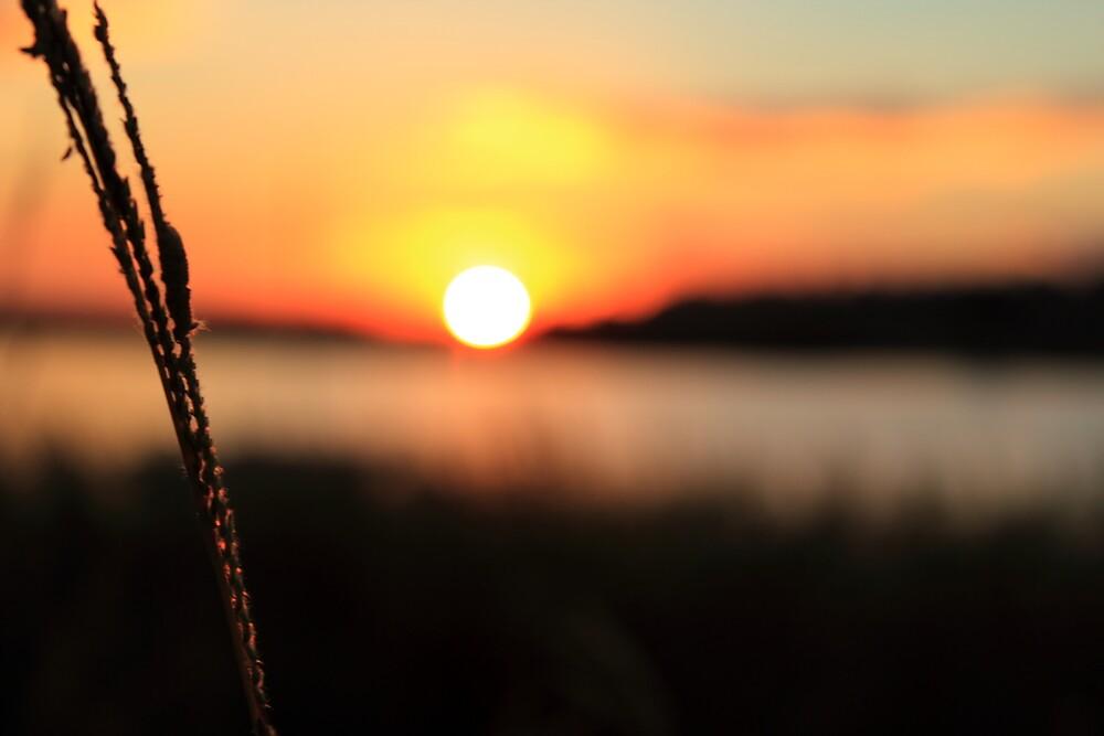 Raw Sunset by Carol James