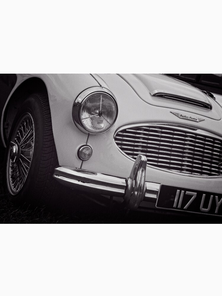 Austin Healey Classic Sports Car Front by robcole