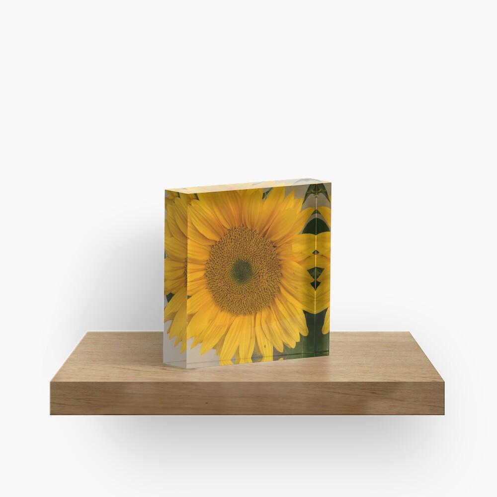 Sunflower, Yellow flower, Sunflower mask Acrylic Block