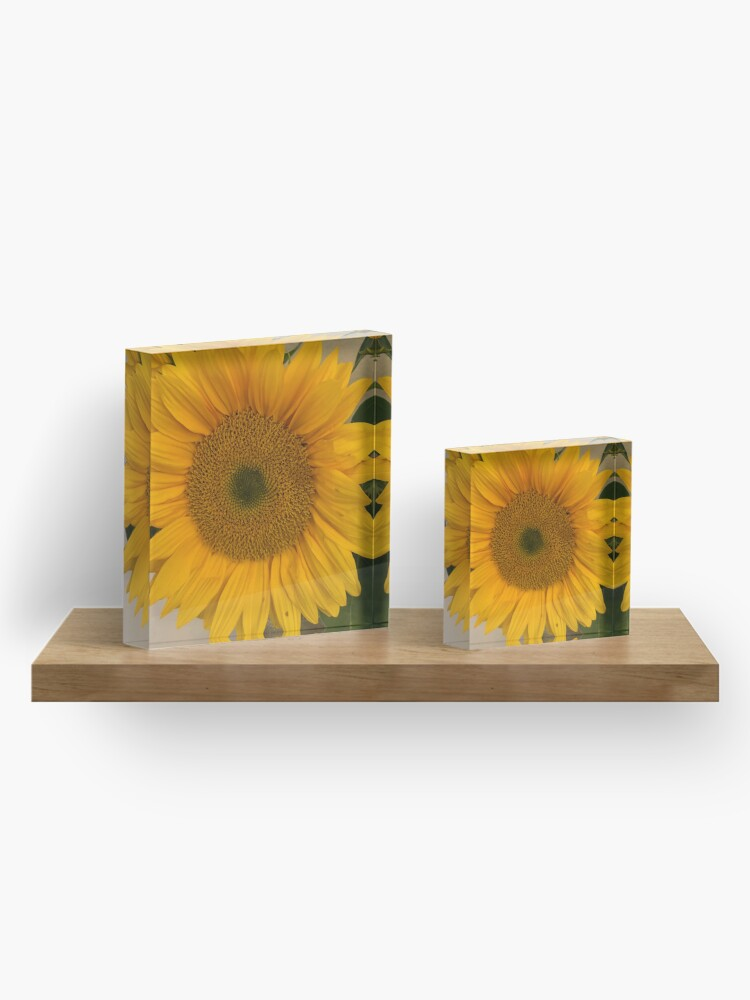 Alternate view of Sunflower, Yellow flower, Sunflower mask Acrylic Block