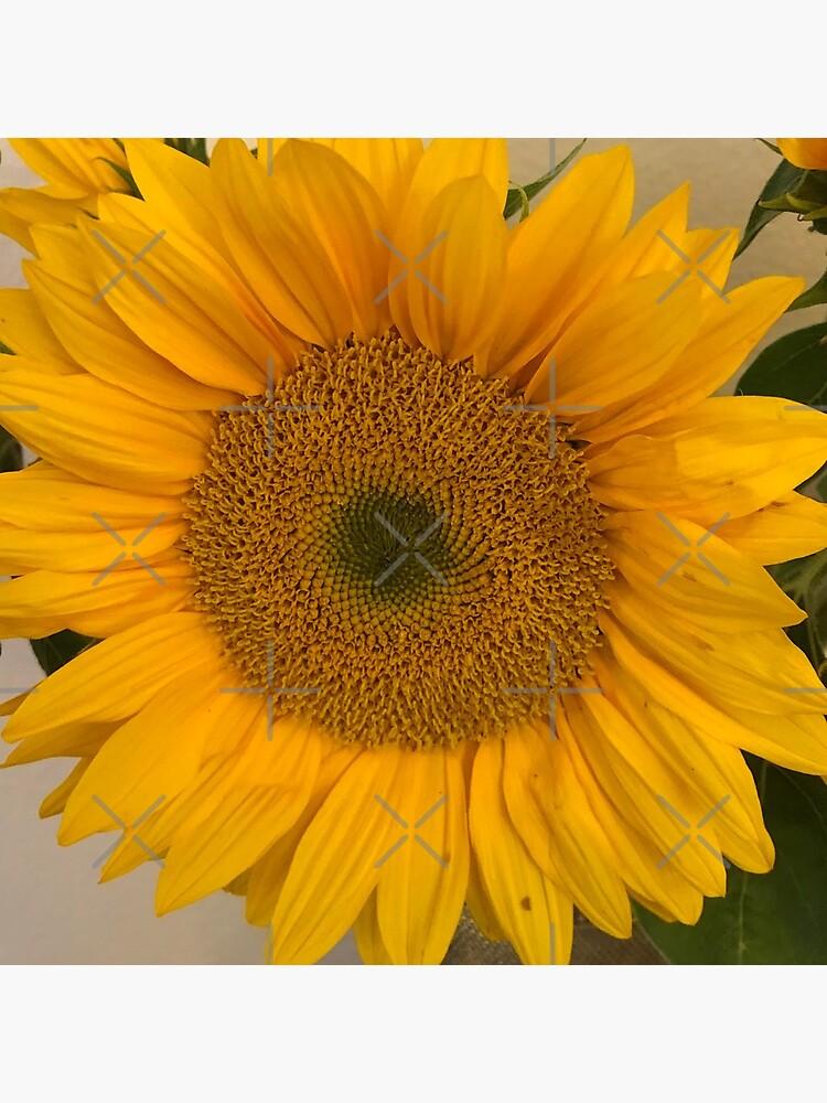 Sunflower, Yellow flower, Sunflower mask by PicsByMi