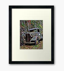 Down on the Farm 64 Framed Print