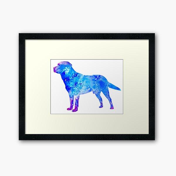 Laborhunde Adoptieren