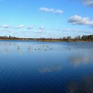 Beautiful Blue -  Lake and Sky by ienemien
