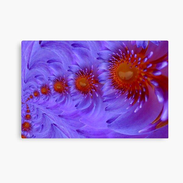 lotus infinite love Canvas Print