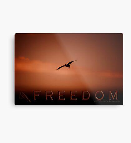 Freedom 2 © Vicki Ferrari Photography Metal Print