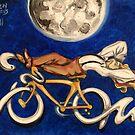 Cycle Dreams by Ellen Marcus