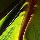 Banana Leaf Cabana by paintingsheep