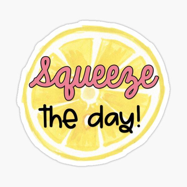 Squeeze the Day sticker  Sticker