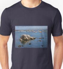 Monterey Harbor, Monterey, California T-Shirt