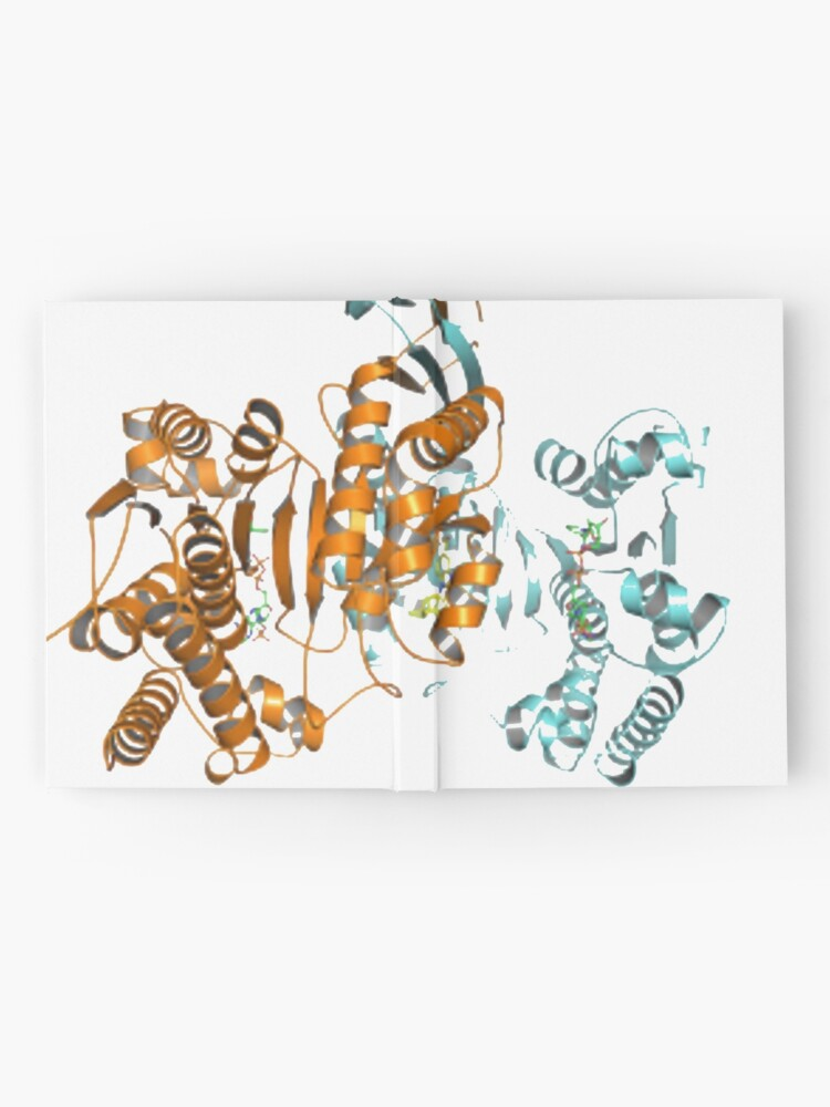 Alternate view of #Enzyme #Informatics, #EnzymeInformatics, #particle #chemistry #medicine #biology #science #biochemistry #shape #chemical #illustration #acid #connection #design #symbol #molecular #insect #horizontal Hardcover Journal
