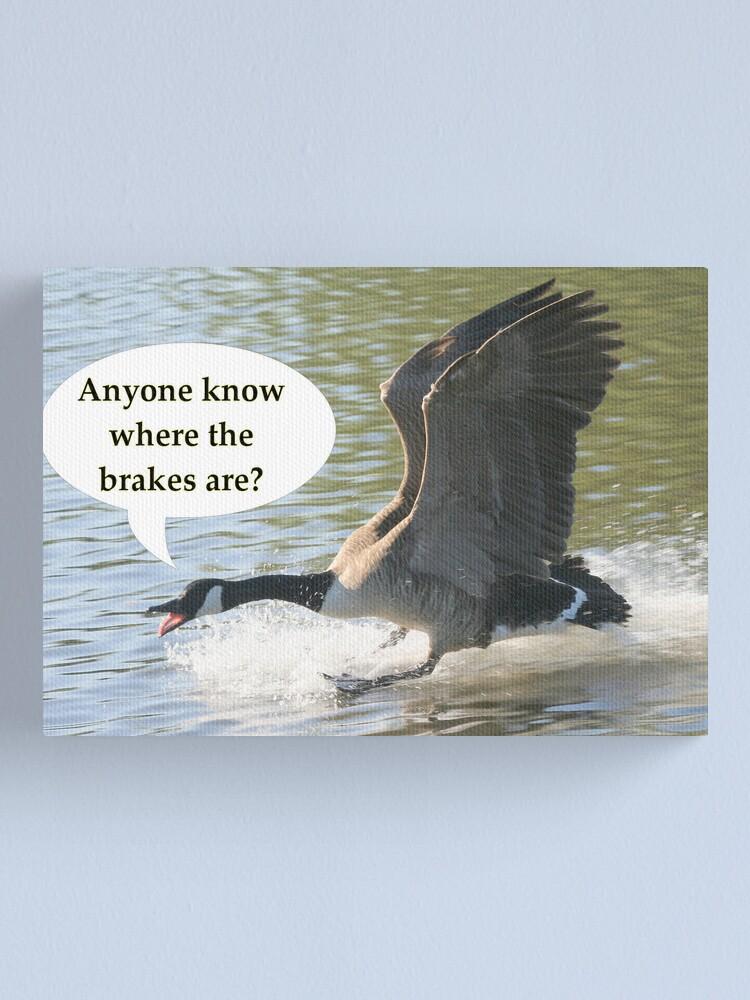 Alternate view of Bird Brakes Canvas Print
