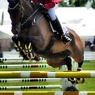 Show Jumping by WillTudor