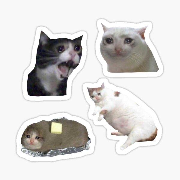 sad cats  Sticker