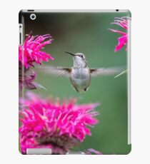 Hummingbird Superhero! iPad Case/Skin