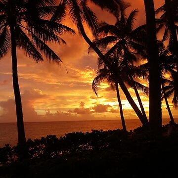 Fiji sunset by TSEclothing