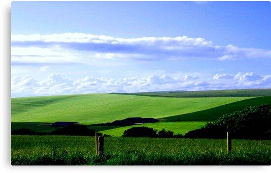 South Downs England ©  by Dawn Becker