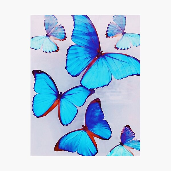ELECTRIC BUTTERFLY Photographic Print