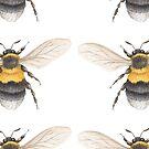 Heath Bumblebee  by Theodora Gould