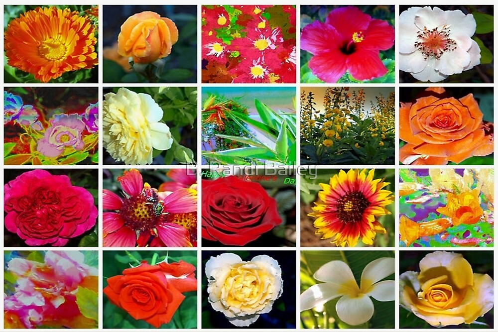 Floral collage 1 by ♥⊱ B. Randi Bailey
