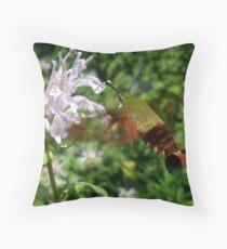 Hummingbird Hawk Moth (Macroglossum stellatarum) Throw Pillow