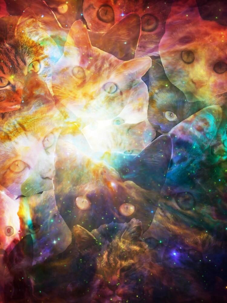 Kitty Galaxy by Tr0y