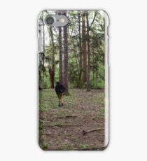 North, West, South, West iPhone Case/Skin