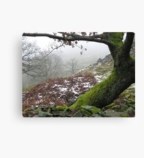 A touch of winter Canvas Print