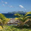 Palm Saturday ~ Sandy Island, Carriacou by moor2sea