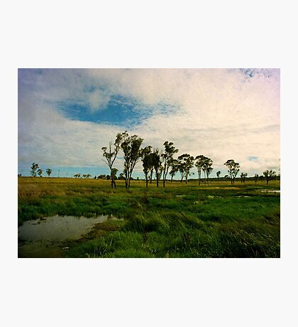Wet Season Photographic Print