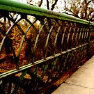{ old shakopee bridge } by Brooke Reynolds
