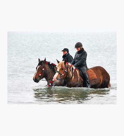 Wet horse legs..... Photographic Print