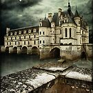 Chateau de Chenonceau France by Peter Howes