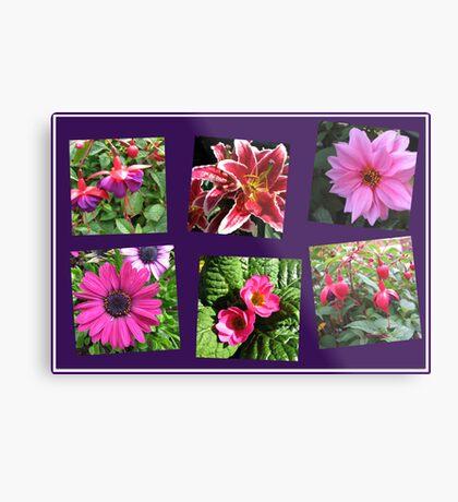 Pink Summer Flowers Collage on Purple Background Metallbild